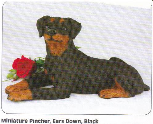 doberman pinscher ører